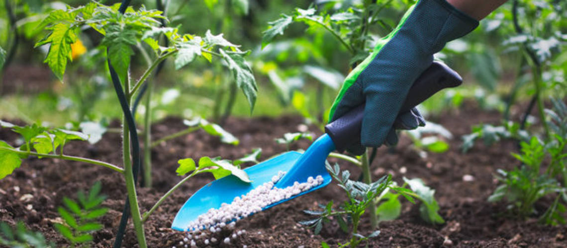Озеленяване и поддръжка на градини София Green World