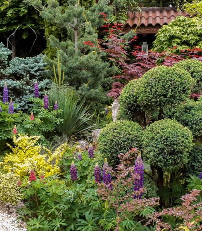 Поддръжка на градина Green World