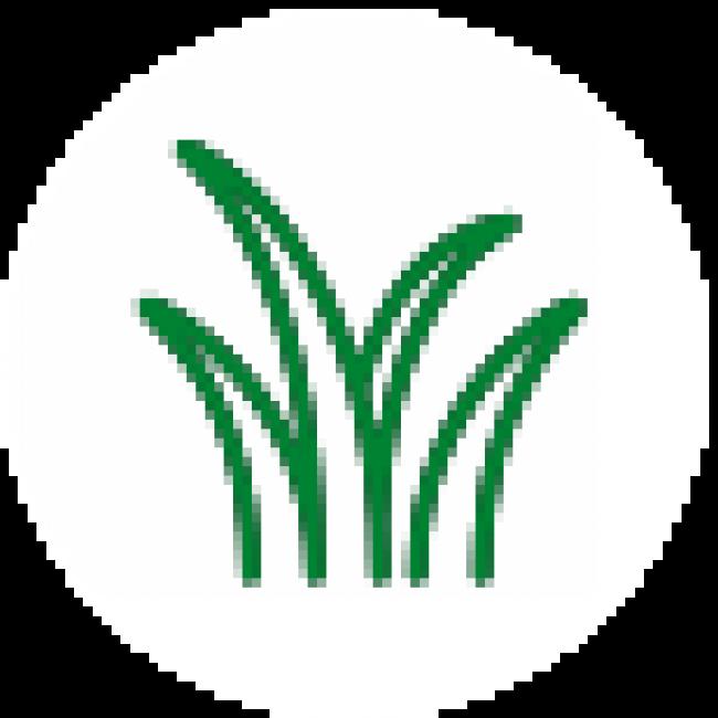 Изграждане и поддържане на зелени площи